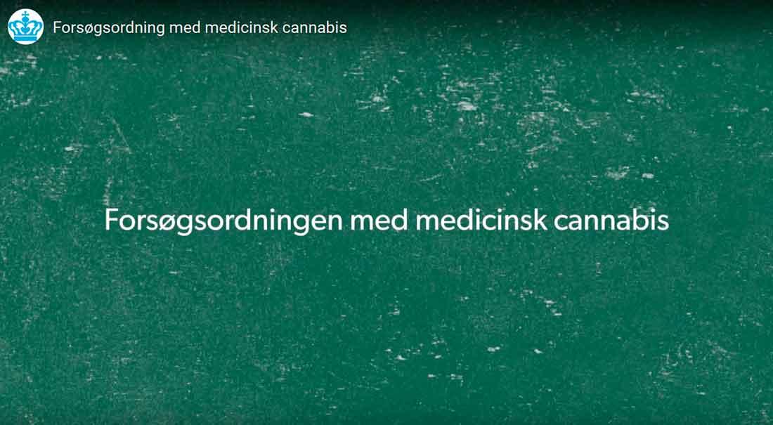 Lægemiddelstyrelsens video om